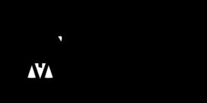 IRS logo | TPG Partners