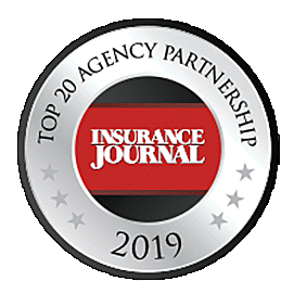 Top 20 Agency Partnership icon | TPG