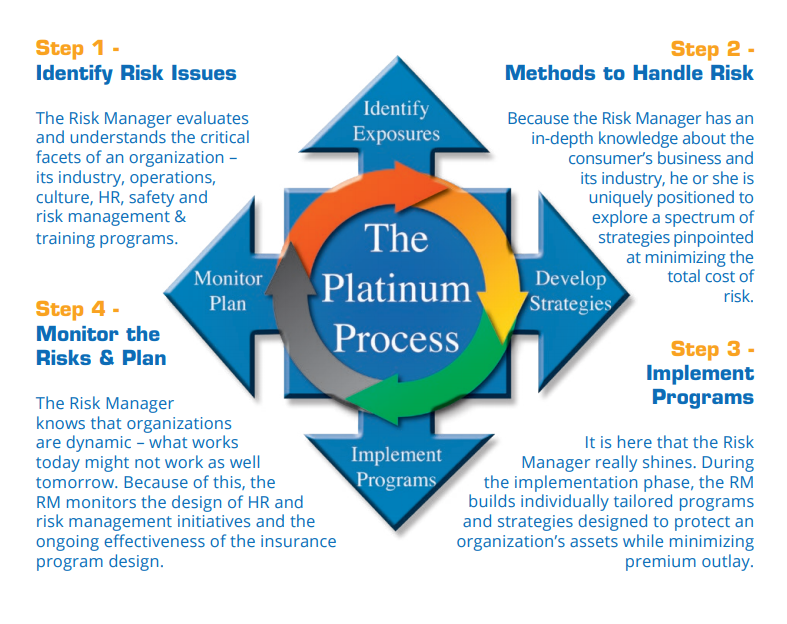 TPG Risk Management Processes | The Platinum Group