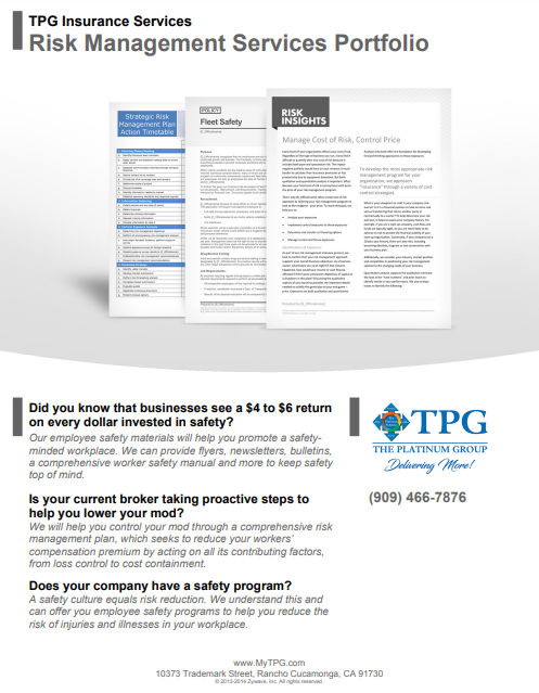 TPG Insurance Services - Risk Management Services Portfolio